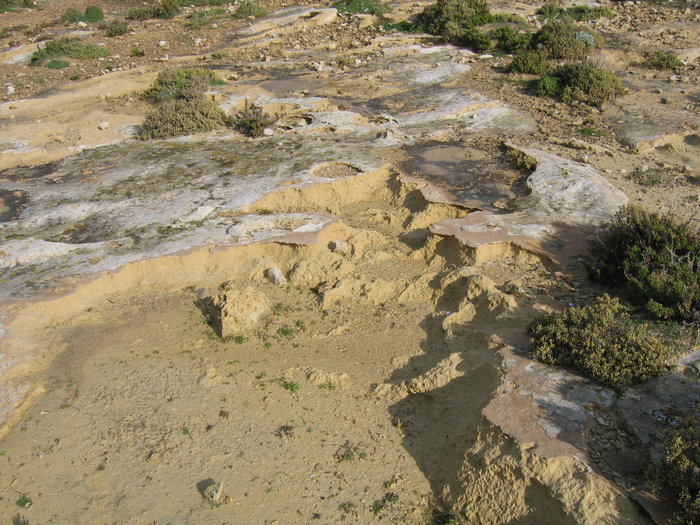 Armour crust and erosion of limestone