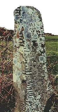Menhirs with marks